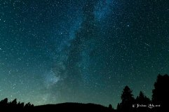 STARS201699